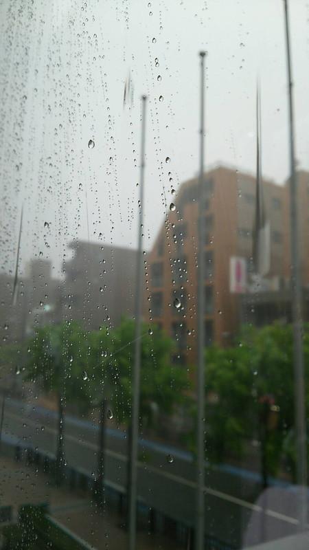 帰りはとんでもない豪雨。打上会場に行けません・・・